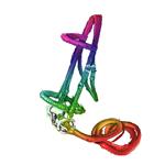 Rainbow horse bridle